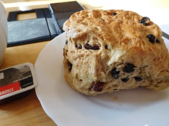 Clotted Cream and Jam Fruit Scone with Earl Grey.